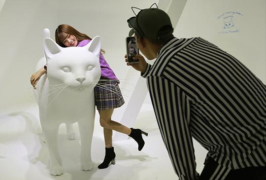 【貓 • 美術館】超療癒展覽來了~西斯貓教堂、10大貓界場景超好拍!