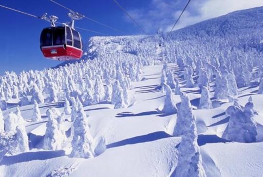 【體驗銀白色的世界,精選日本雪花紛飛的絕美雪祭】