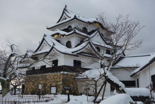 【日本】深度漫遊琵琶湖:400年歷史的國寶「彥根城」