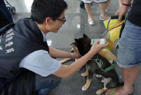 【動保大小事】北市稽查200家獸醫院 僅開罰3千元