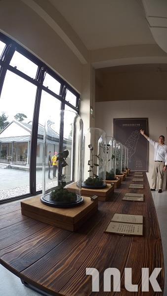 茶博館4.JPG