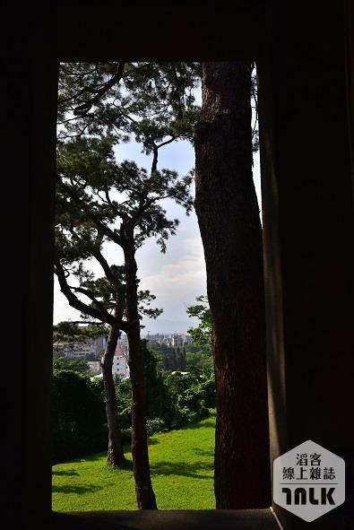 松園5.JPG