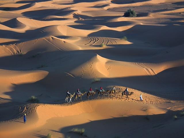 01.瑰麗壯闊、連綿不絕的沙丘,是撒哈拉最讓人印象深刻的自然景觀。.JPG