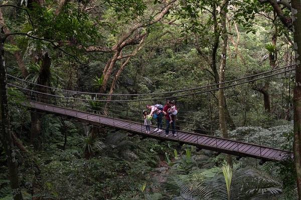 05-大板根_園區一環登山路線中段會經過彩虹橋.jpg