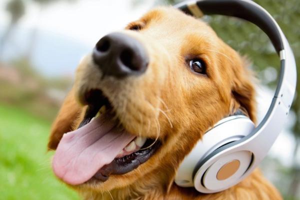 music07.jpg