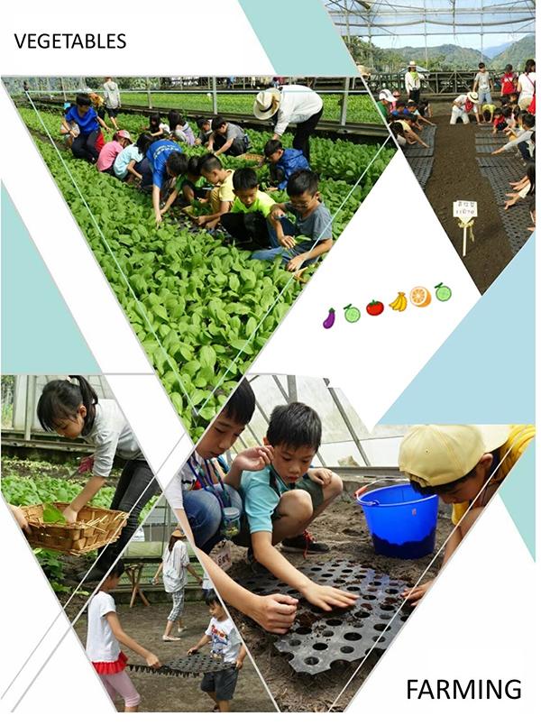 2018春夏食農教育一日體驗營.jpg