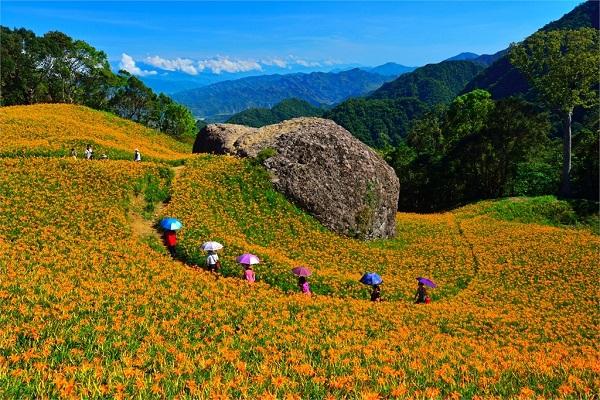赤柯山(花東縱谷國家風景區)-千噸石龜.jpg