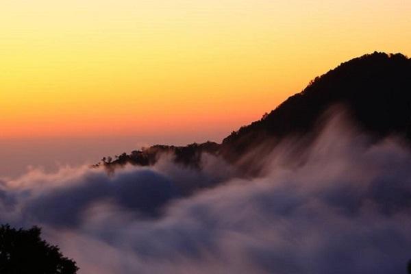 阿里山國家森林遊樂區.jpg