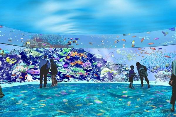 珊瑚潛行.jpg