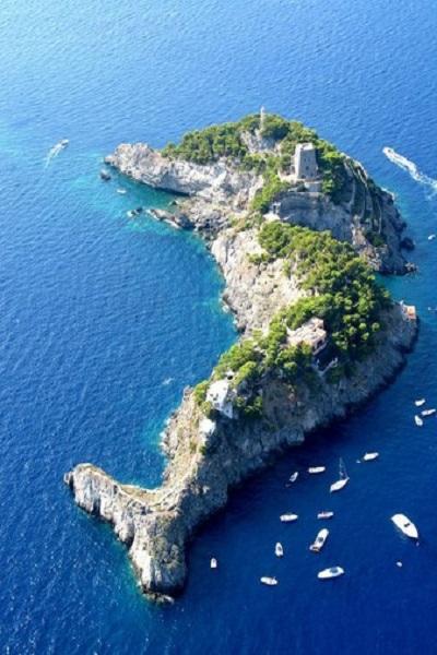 海豚島(when on earth).jpg