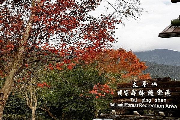 太平山-2.jpg