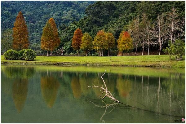員山蜊埤湖-2.jpg