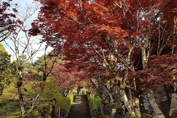 太平山-1.jpg