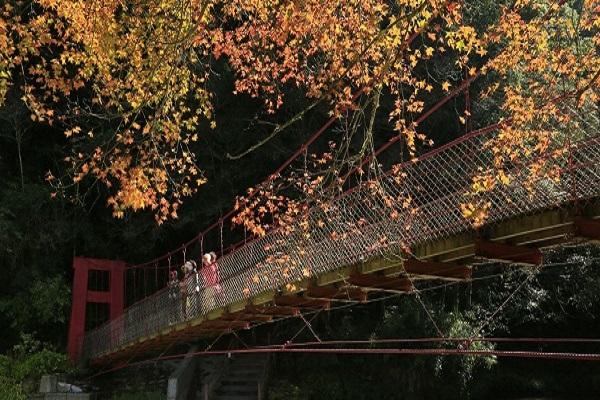 杉林溪-1.jpg