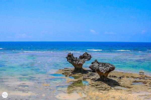Okinawa7_22.jpg