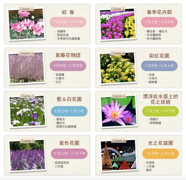 purpleflower_3.png
