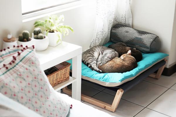 猫咪必备用品 让猫咪抢着躺的高质感原木小床