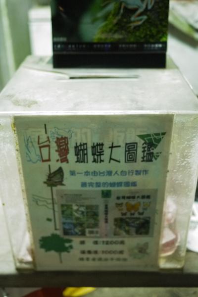 新店牛伯伯蝴蝶園5