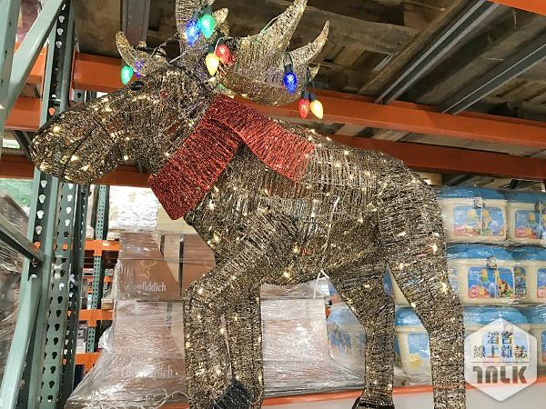 LED麋鹿造型聖誕裝飾 (2).JPG