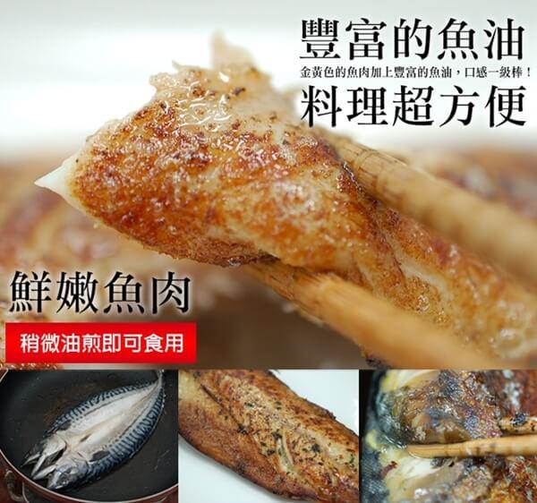 05鯖魚a.jpg