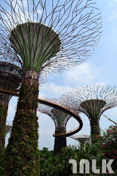 新加坡熱門景點4