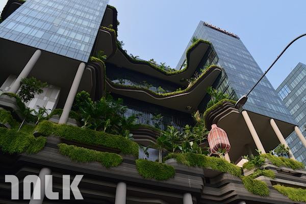 新加坡主題5