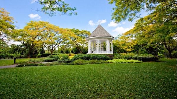 新加坡自然3