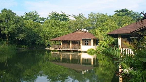 新加坡自然4