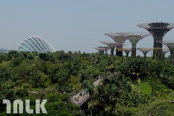 新加坡主題2