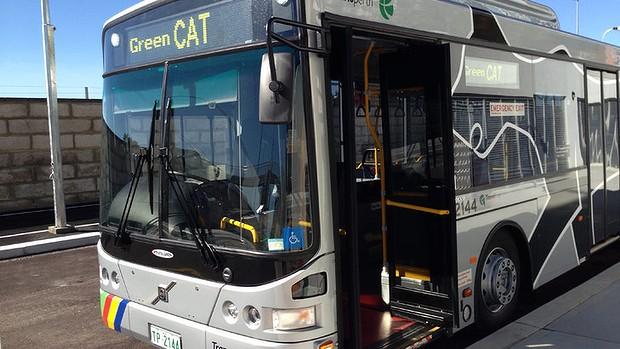 西澳柏斯免費貓公車-CAT