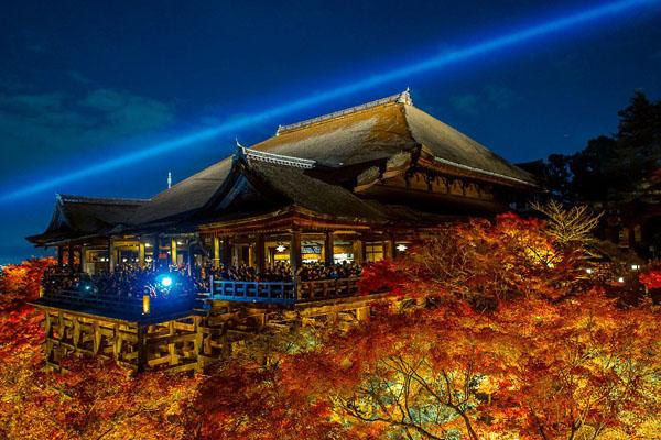 T-清水寺夜楓-japantoday