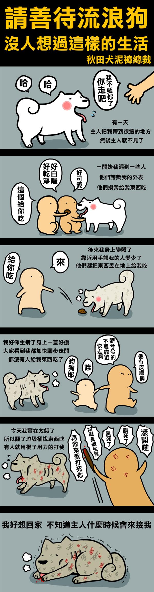 流浪狗.jpg