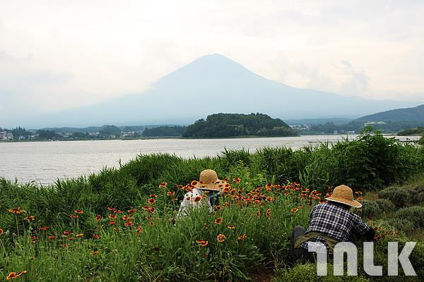 河口湖-富士山.JPG
