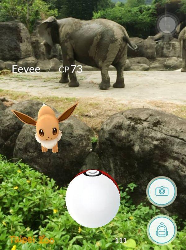 Taipei Zoo 臺北市立動物園3.jpg
