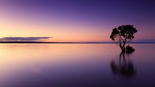 sunset-1373171_640.jpg