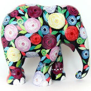 小象1.jpg