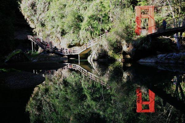愛上杉林溪15.jpg