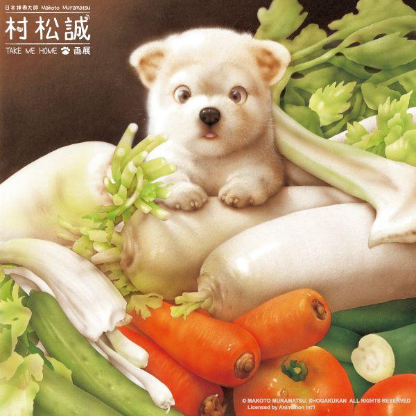 寵物10.jpg