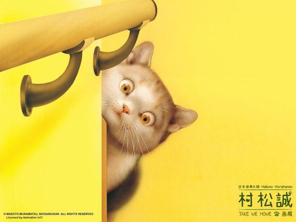 寵物8.jpg