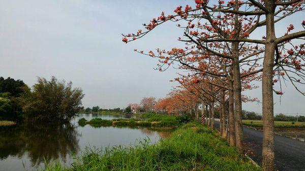 台南市白河區公所2.jpg
