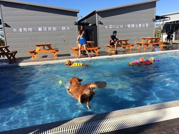 圖八:屏東恆春地區的「寵愛月台」,能讓寵物享受有水療設施的超大游泳池.jpg