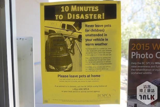 SPCA 133.jpg