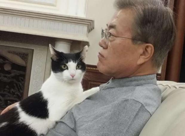南韓總統2.jpg