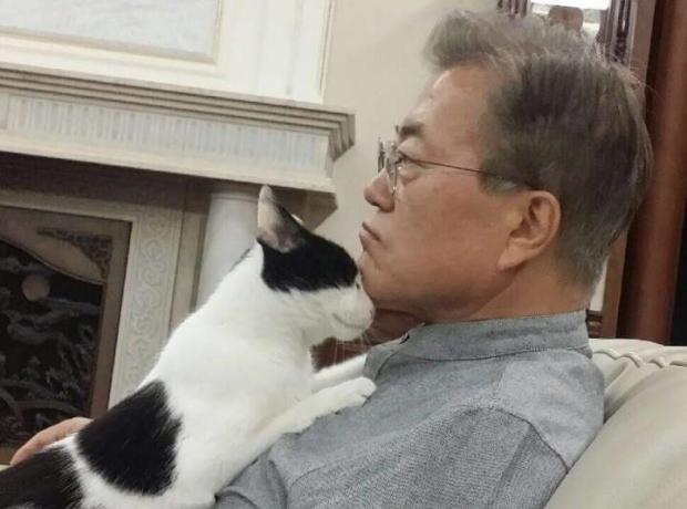 南韓總統s.jpg