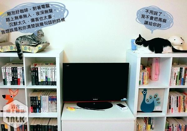 抓抓床.貓抓板.玩具--007-2.jpg