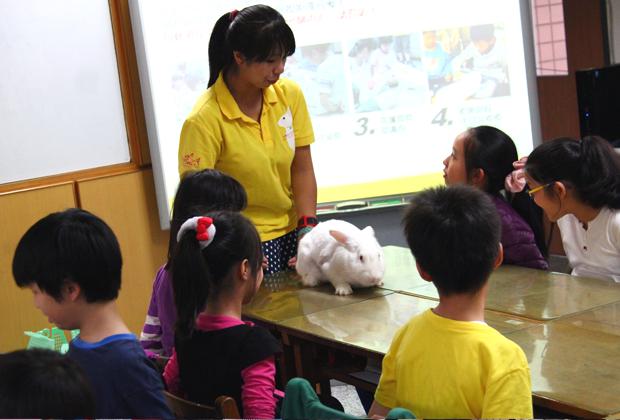 003--愛兔協會認養急難救助.JPG