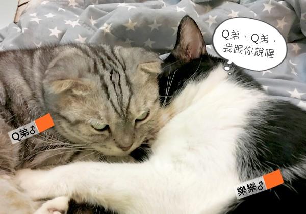 001_樂樂:「Q弟、Q弟,我跟你說喔,」-1.jpg