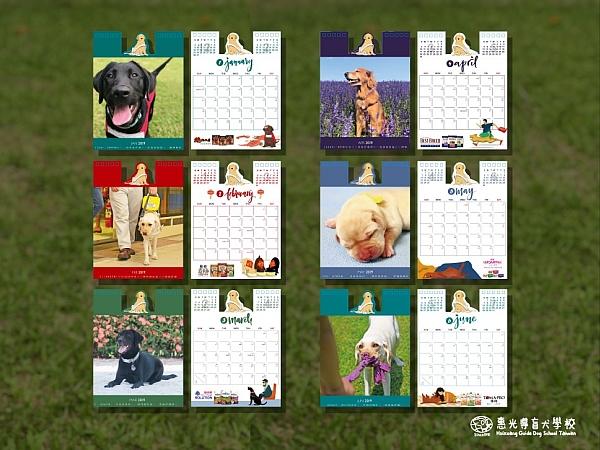 009_惠光導盲犬教育基金會_002.jpg