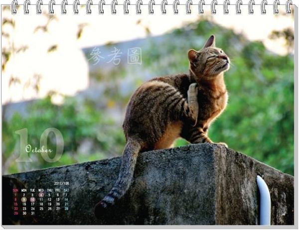 021--2017.公益.年曆.桌曆.週曆.貓.狗--雨喵中途.jpg