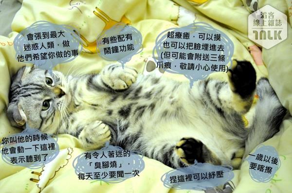 貓咪使用手冊--100.jpg(浮水印)
